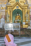 Buddhist nun praying. Stock Photo