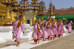 Buddhist nuns in Myanmar Royalty Free Stock Photography