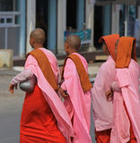 Buddhist Nuns in Myanmar. Feb 2015 No model release Editorial use only Royalty Free Stock Photo