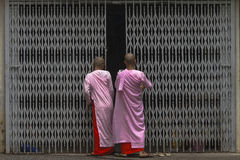 Buddhist nuns in Myanmar Royalty Free Stock Image