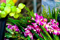 Buddhist offerings Royalty Free Stock Photo
