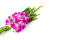 Buddhist Orchid Flower offerings to gods . Stock Photography