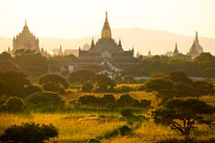 Buddhist Pagodas at sunrise, Bagan, Myanmar. Royalty Free Stock Photo
