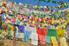 Buddhist prayer flags in  Dharamshala, India. Colorful buddhist prayer flags in town of  Dharamshala, India Stock Photo
