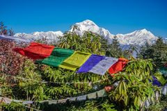 Buddhist Prayer Flags Hanging along Hiking Paths in Nepal. Trekking in the Himalayas royalty free stock photo