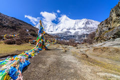 Buddhist prayer flags the holy traditional flag along site the w Stock Photography