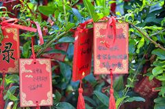 Buddhist Prayer request plaques Xiangshan temple. Red prayer requests hanging from a green bush within the Xiangshan Temple property in Longmen Grottoes scenic stock image