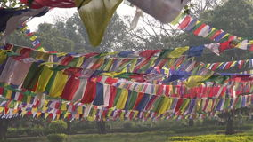 Buddhist prayers flags in Lord Buddha birthplace in Lumbini. Nepal stock footage