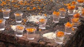 Buddhist prayers give food and flowers in Lumbini, Buddha birthplace,Nepal stock footage