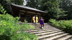 Buddhist priests and believers stock video