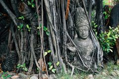 Buddhist sculpture with tree in Ancient City Mueang Boran, Thailand. Buddhist sculpture with tree in Ancient City Mueang Boran, Bangkok, Thailand Stock Photo