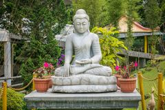 Buddhist Statue in a Garden. Located in buddhist temple where garden full of statue stock image