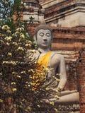 Buddhist statue at Wat Yai Chaya Mongkol. Buddhist statues at Wat Yai Chaya Mongkol Ayutthaya Royalty Free Stock Photos