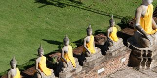 Buddhist statues draped in yellow robes. In Malaysia near green grass Royalty Free Stock Images