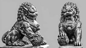 Buddhist stone statue. Guardian Lion Foo Fu dog guard Stock Photos