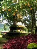 Buddhist stupa in the nature in Bali with flowers and trees royalty free stock photography