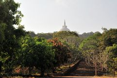 Buddhist stupa and stairs, Mihintale, Sri Lanka Royalty Free Stock Photos