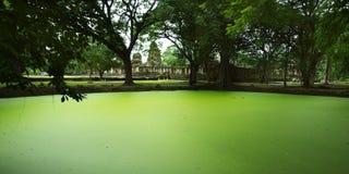 Buddhist temple. Green lake near buddhist temple Royalty Free Stock Image