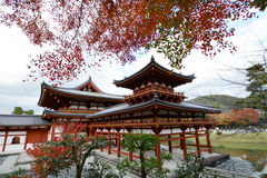 Buddhist Temple in Kyoto Japan with Red Maple Trees Stock Images