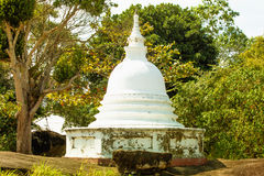 Buddhist temple is standing in the jungle of Unawattuna Stock Images