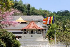 Buddhist Temple of the Tooth, Kandy, Sri Lanka Royalty Free Stock Photo