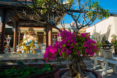 Buddhist temple in Vietnam Stock Image