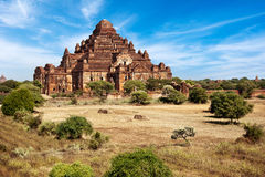 Buddhist Temples at Bagan Kingdom, Myanmar Royalty Free Stock Photo