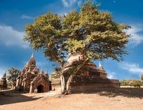 Buddhist Temples at Bagan Kingdom, Myanmar (Burma) Stock Photo