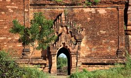 Buddhist temples in Bagan Stock Photography