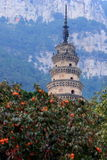 Buddhist tower Stock Images
