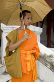 Buddhistic monk in Luang Prabang, Laos Stock Images