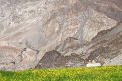Buddhistic stupas (chorten) in the Himalayas Stock Image