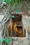Buddhistische Kirche umgeben durch Baumwurzel Lizenzfreies Stockfoto