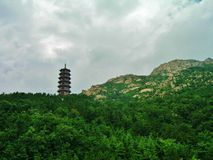Buddhistische Pagode Stockbilder