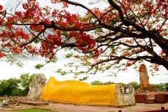 Buddhistische Tempel von Ayuthaya, Thailand Stockfotos
