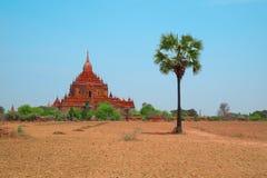 Buddhistischer Tempel in Bagan, Myanmar, Südostasien Stockfotografie