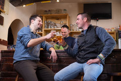 Buddies are having drinks. In a pub Stock Photos