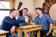 Buddies are toasting with beer. In a pub Royalty Free Stock Photography