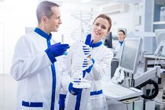 Budding meditative scientists team using DNA model. Molecule organization. Happy glad male and female team of scientist examining molecules in DNA and smiling Stock Photography