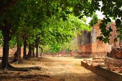 Buddism antico rimane Fotografia Stock Libera da Diritti
