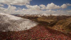 Buddisminstitut i Tibet Arkivbild