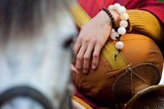 buddist Royaltyfria Bilder