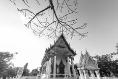 Buddist tempel Royaltyfria Foton