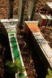 Buddist und asiatische Geisthäuser des Animisten:: Perspektive 2 schoss Ansicht von den Sockeln, die benutzt wurden, um lokale Ge Stockfotos