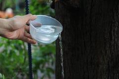 Buddister gör merit som häller vatten från flaskan in i koppen, efter en bra gärning och, delar rikedomen till buddism arkivfoto