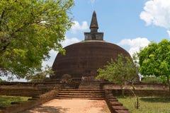 Buddistisk dagoba (stupaen) Polonnaruwa, Sri Lanka royaltyfri bild