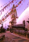 buddistisk kathmandu nepal stupa Arkivbilder