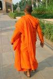 buddistisk monk royaltyfri bild