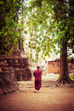 Buddistisk munk på forntida Wat Mahathat ayutthaya thailand Royaltyfri Fotografi