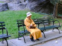 Buddistisk munk som ses i Central Park, New York City, USA royaltyfri bild